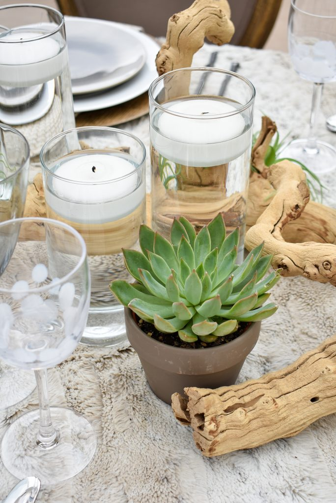 Succulents on a Neutral Fall Alfresco Dining Tablescape with neutral colors