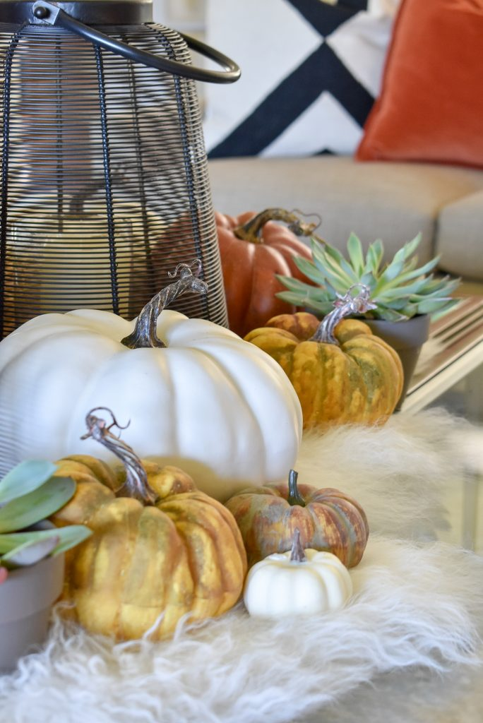 Warm and Cozy Coffee Table Styling for Fall with pumpkins and succulents