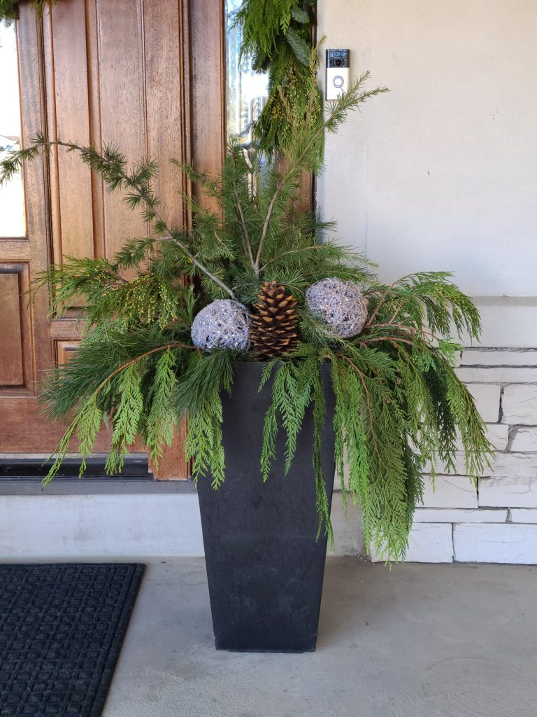 Front porch pots decorated for Christmas with fresh evergreens