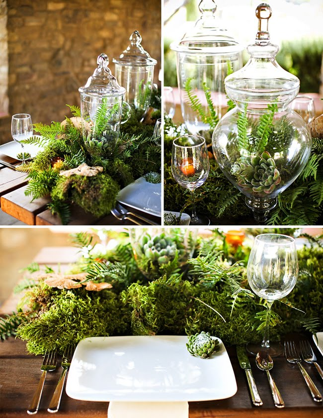 Many Ways to use Moss in your Spring Decor