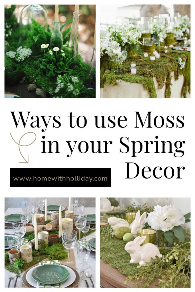 A collage of a lot of Ways to use Moss in your Spring Decor