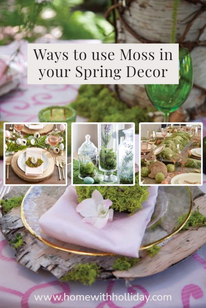 A Collage of lots of Ways to use Moss in your Spring Decor