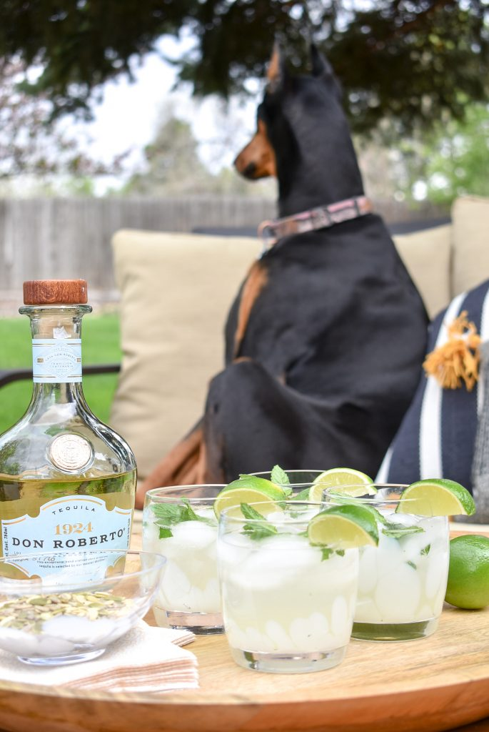 A photo bomb of a Doberman in a shot of Lime and Mint Tequila Spritzer