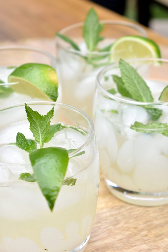 Lime and Mint Tequila Spritzer