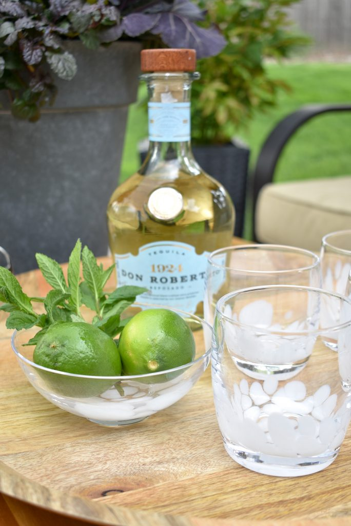 Ingredients in a Lime and Mint Tequila Spritzer