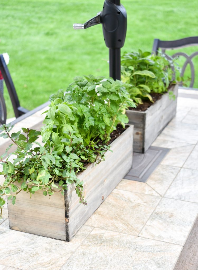 Two Simple Herb Garden Centerpieces on an outdoor table