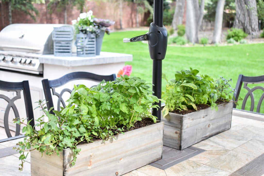 Simple Herb Garden Centerpieces on a patio table