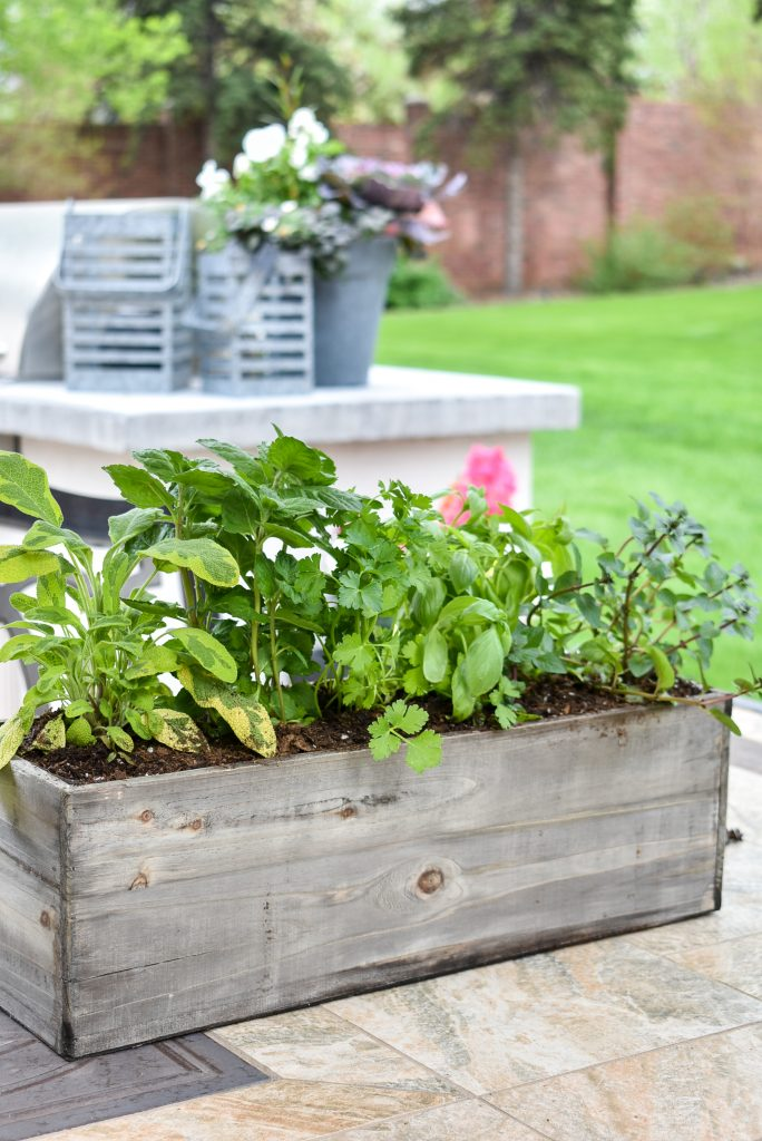 Herbs planted in a wood box as a centerpiece