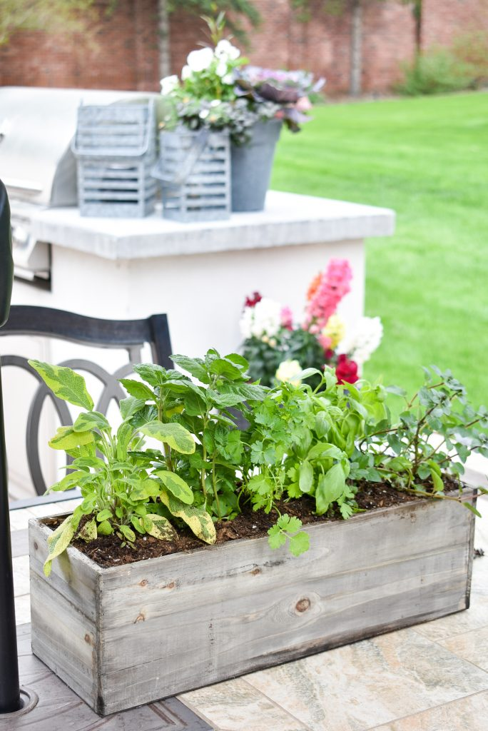 Simple Herb Garden Centerpieces for Outdoors