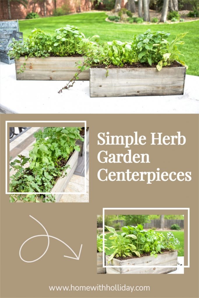 A collage of two Simple Herb Garden Centerpieces