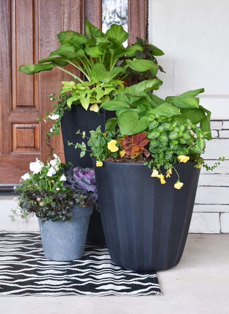 Three Simple Summer Planter Pot Ideas for Shade