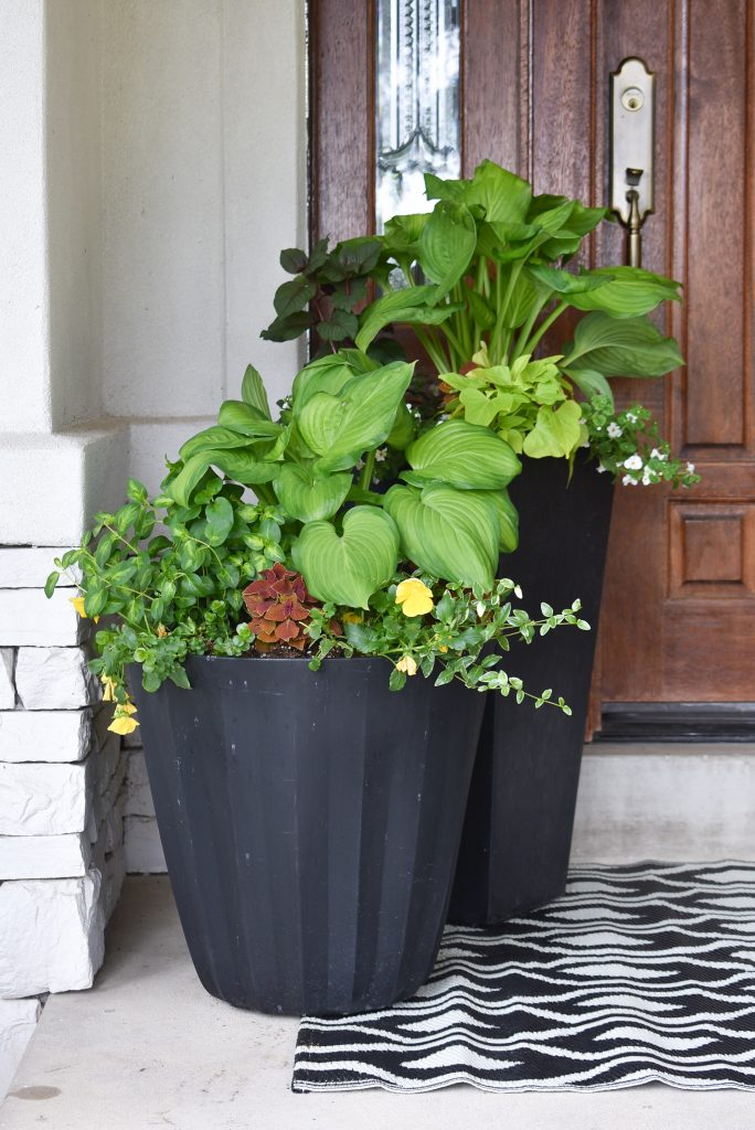 Simple Summer Planter Pot Ideas for Shade on a patio