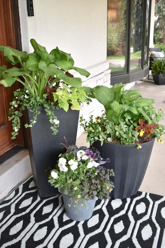 Three Simple Summer Planter Pot Ideas for Shade on a front porch