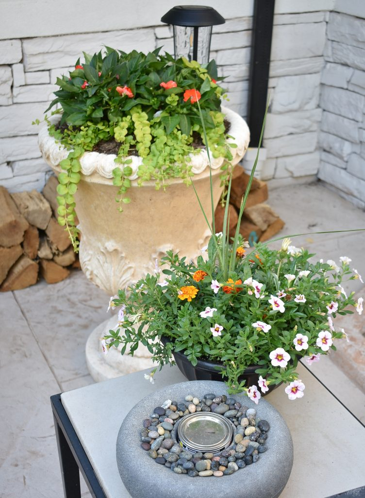 10 Ways to give your Patio a Makeover with Plants