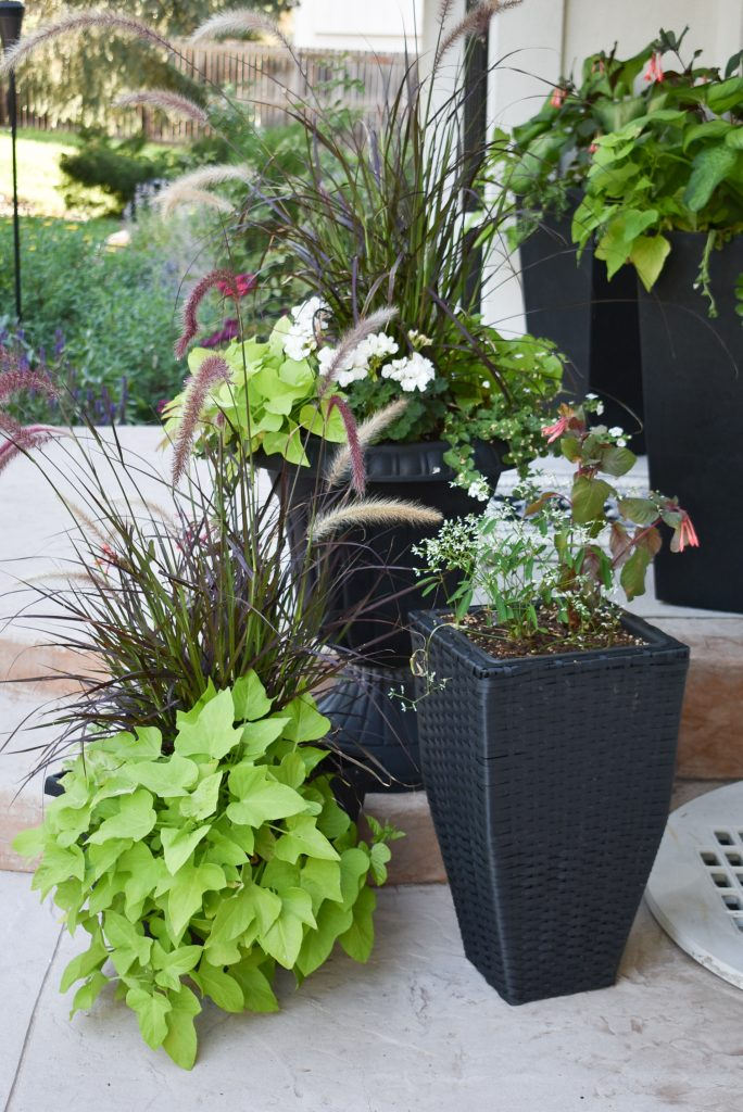 10 Ways to give your Patio a Makeover with Planter Pots