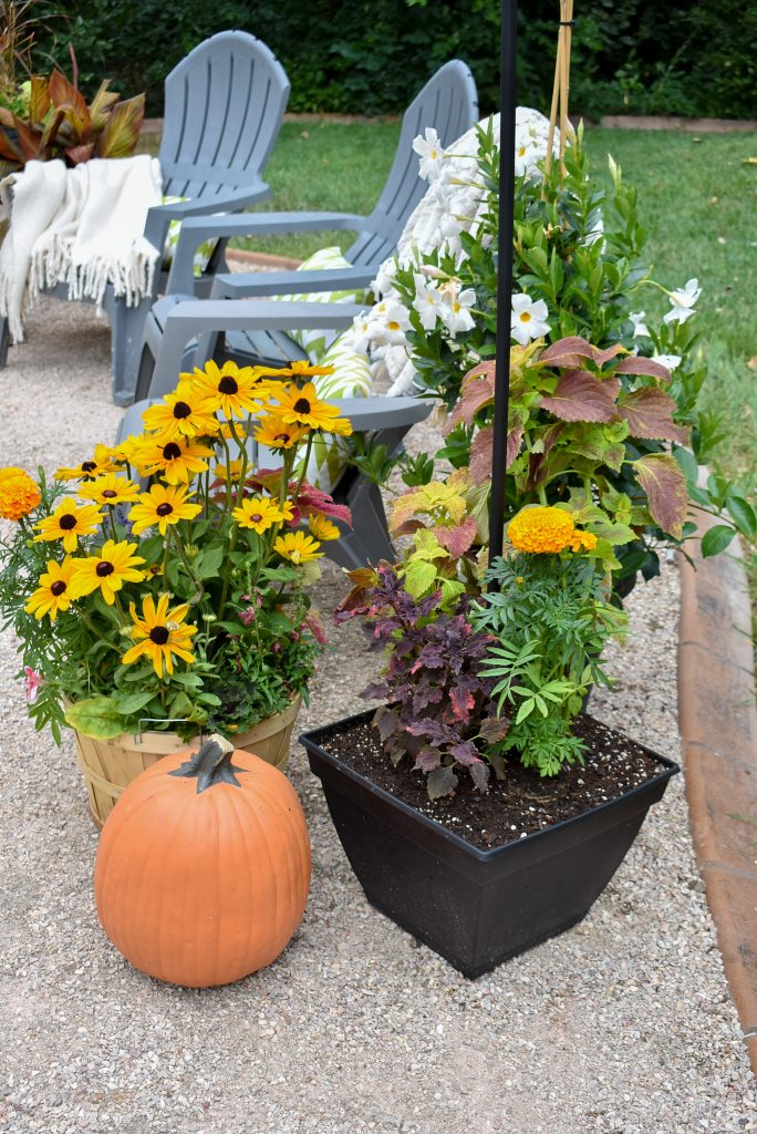 Flowers on a New Cozy Firepit Area for Fall