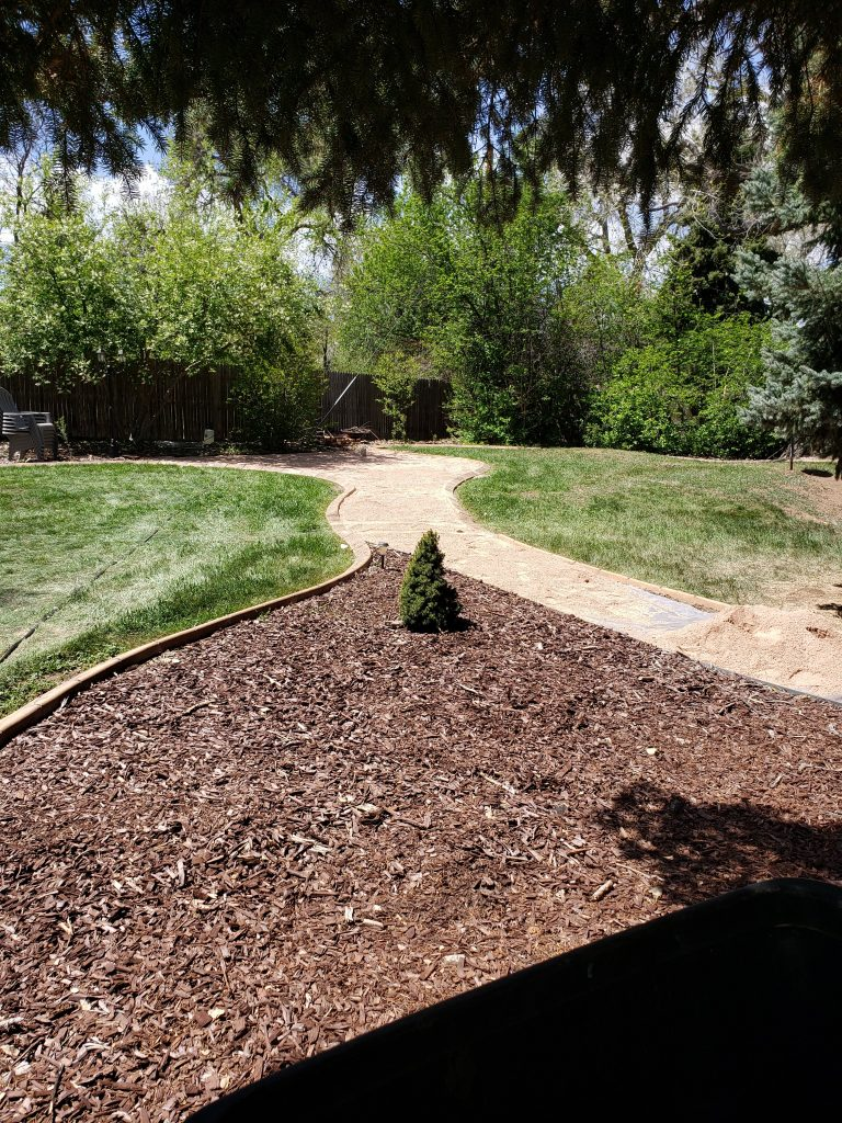A new pathway being made in a back yard