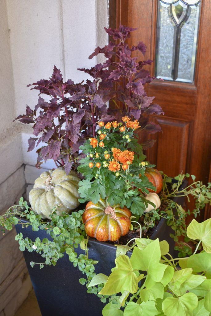 Fall planter pots on a front porch