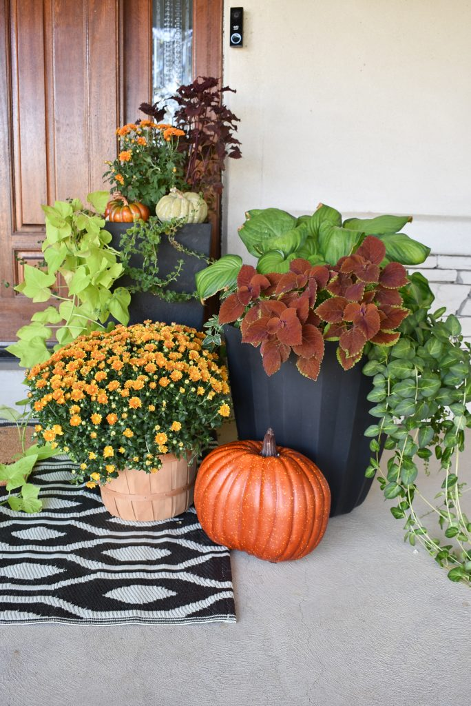 Planter pots on a front porch for fall
