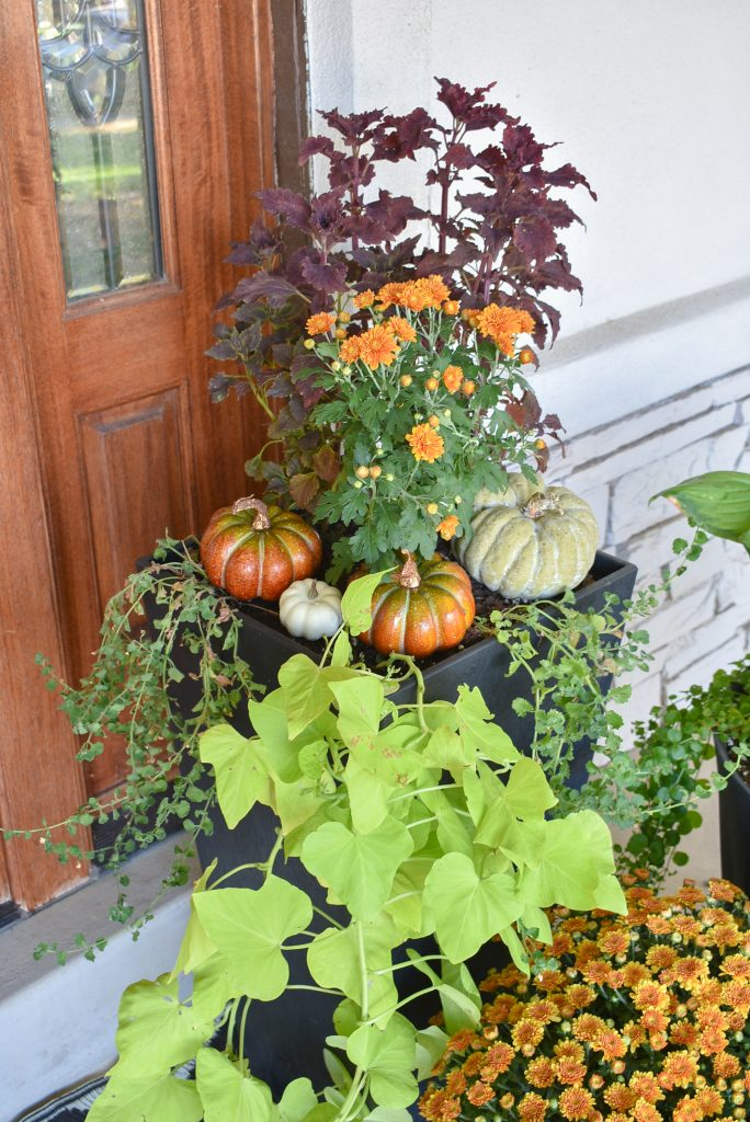Fall Planter Pots with pumpkins on a front porch decorated for fall